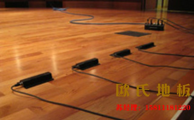 欧氏舞台木地板—舞蹈演员不可缺少的朋友