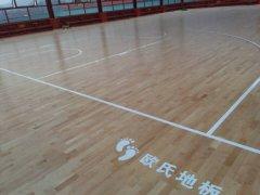 体育馆安装运动木地板的必要性
